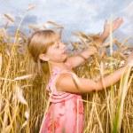 Little girl in a wheat field — Stock Photo