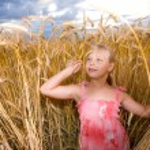 Little girl in wheat field — Stock Photo