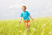 Happy boy fun in the field — Stock Photo