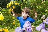Happy boy enjoy on Flowers — Stock Photo