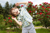 Happy boy against of rose bushes — Stock Photo
