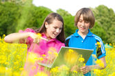 Two Smiling teenagers with laptop on meadow full of yellow flowe — Stock Photo