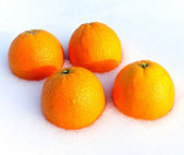 Oranges on snow. — Stock Photo
