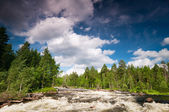 River in Karelia — Stock Photo