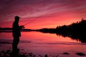 釣り — ストック写真