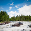 Stock Photo: North Karelia. Russia