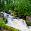Beautiful landscape with wood and a falls. — Stock Photo