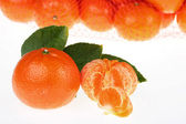 Tangerines packed — Stock Photo