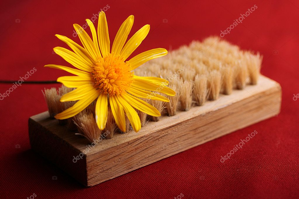 Brush for cleaning of clothes with a yellow flower on a red background. — Stock Photo #2981062