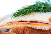 Hot sandwich — Stock Photo