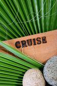 Cruise — Stock Photo