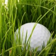 Stock Photo: Ball for golf