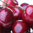 Stock Photo: Berries of cherry