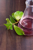 Green leaves next to an erlenmeyer flask with a red liquid in it. — Stock Photo