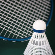 Постер, плакат: Badminton equipment