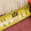 Tape measure - Foto de Stock
