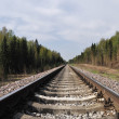Railway track in forest - Stock Photo