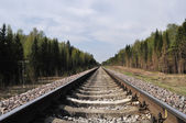 Railway track in forest — Stock Photo
