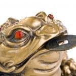 Feng Shui Frog — Stock Photo