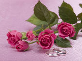 Silver wedding rings and roses — Stock Photo