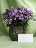 Flowers are in a vase and memo card — Stock Photo