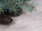 Branch fir-tree on a wooden background — Stock Photo