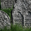 Old Jewish cemetery — Stock Photo