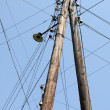 Stock Photo: Telegraph Pole