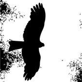 Bird of prey silhouette — Stock Vector