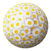 Sphere from flowers — Stock Photo