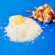 Sea salt with shells — Stock Photo