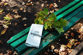 A bench in the park — Stock Photo