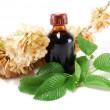 Medicinal plant with a bottle — Stock Photo