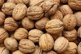 Walnuts — Stockfoto