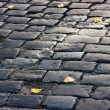 Old cobblestone road — Stock Photo #2794063