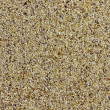 Closeup of beach sand — Stock Photo #3162328
