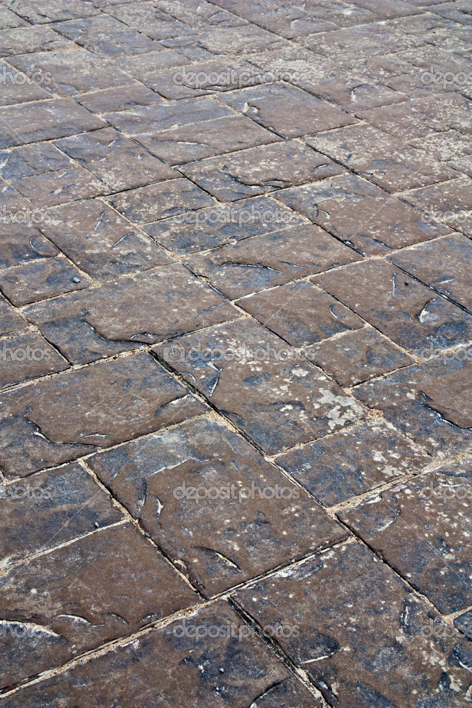 Pavement texture — Stock Photo #3472293