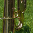 Tuba on the green grass — Stock Photo