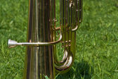 Tuba on the green grass — Stockfoto