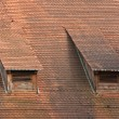 Royalty-Free Stock Photo: Old red roof tiles