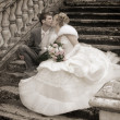 The newly married couple — Stockfoto