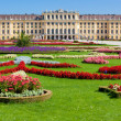 Schonbrunn palace — Stock Photo #3071566