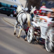 Horse with coach on city street — Stok fotoğraf