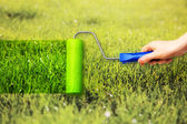 Young woman painting on grass — Stock Photo