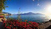Geneva lake panorama — Stock Photo
