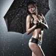 Young sexy woman with umbrella — Stock fotografie #3739096