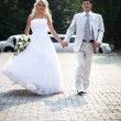 Stock Photo: Young wedding couple