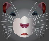 Grey rodent — Vecteur