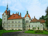 замок шенборнов, карпаты, украина — Стоковое фото