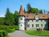 Castello di shenborn, carpazi, ucraina — Foto Stock
